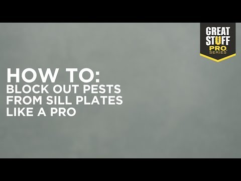 HOW TO: Stop Pests and Seal Sill Plates Using GREAT STUFF PRO™ Pestblock