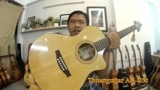 GTGuitarshop guitar review - Thuanguitar 03 series