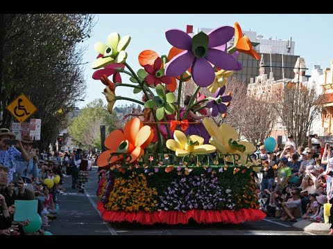 Beautiful Parade - Carnival of Flowers - Toowoomba