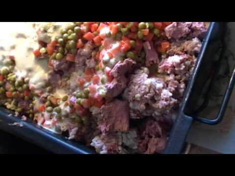 Gone To The Dogs Again!  Beef And Liver Dog Food:  Noreen's Kitchen