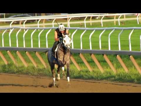 Creator Workout at Saratoga Race Course