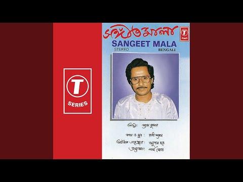 Chokher Jale Hayechhe Sagar