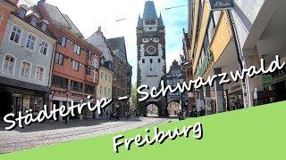 Städtetrip - Freiburg im (Breisgau) Schwarzwald bei Bilderbuchwetter besuchen