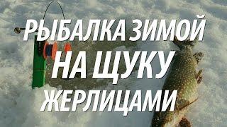 Зимняя рыбалка на щуку жерлицами на озере.
