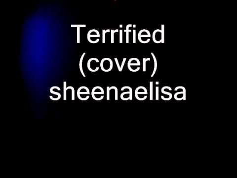 Terrified (Katharine McPhee/Kara Dioguardi) -cover