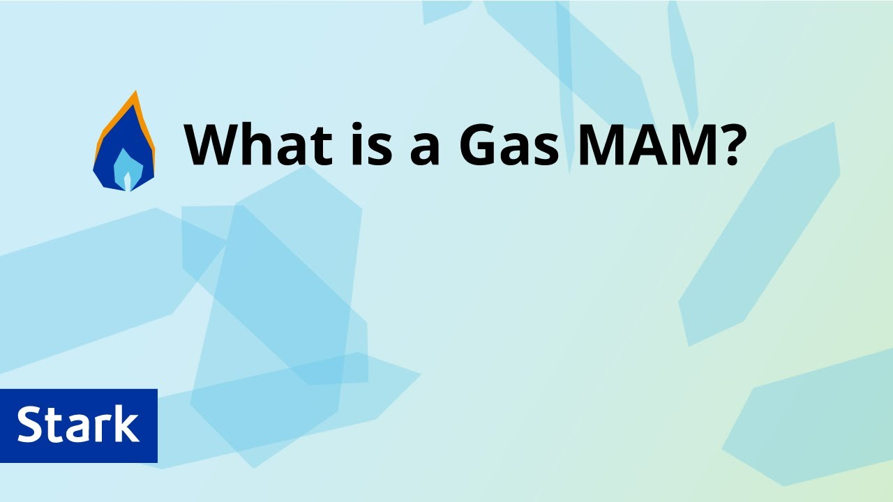 Download What is a Gas MAM? - Stark