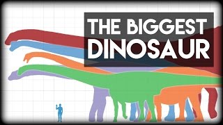 What is the Biggest Dinosaur?