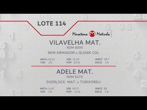LOTE 114 Maratona Matinha