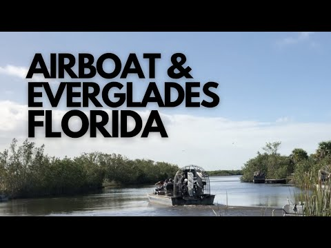 Airboat At Everglades City Florida | How Much Is The Airboat Tours? Let's Find Out!
