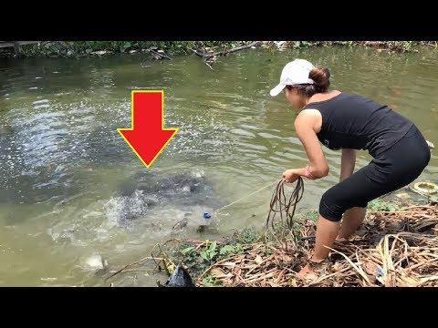 Top 3 Cast Net Fishing For Big Fish In Small Pond!