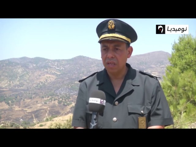 المدية  نوميديا تررافق مصالح الغابات في تدخلاتهم لإخماد  الحرائقق
