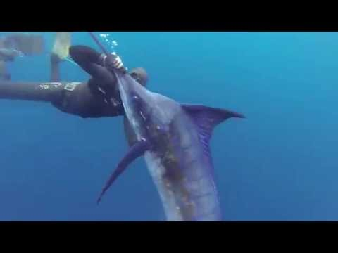 New spearfishing film Robinson Crusoe Islands, Chile!