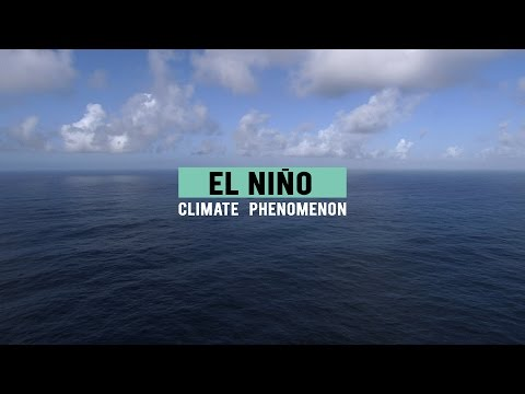 1MSCIBIT - El Niño Climate Phenomenon - ENGLISH
