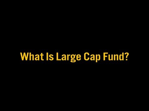 What is a Large Cap Fund? (English) | Prakala Wealth Management | By Chokkalingam Palaniappan