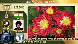 TOP 20 PHOTOGRAPHY VIDEO AWARD 19.08.18 | FLOWERS ROSE PHOTOGRAPHY  | ROSES PHOTOS PHOTOGRAPH