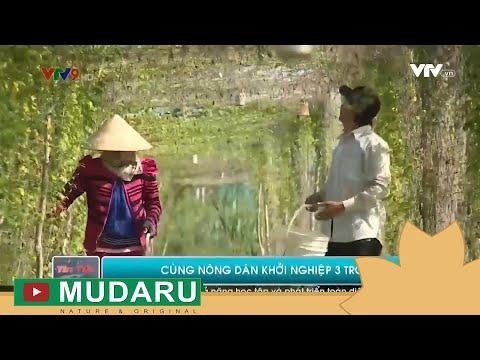 TNB Việt Nam cùng nông dân khởi nghiệp | VTVT9