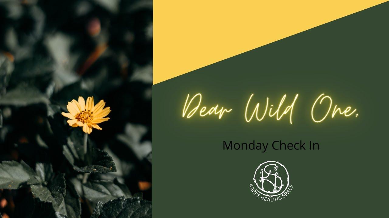 Dear Wild One,