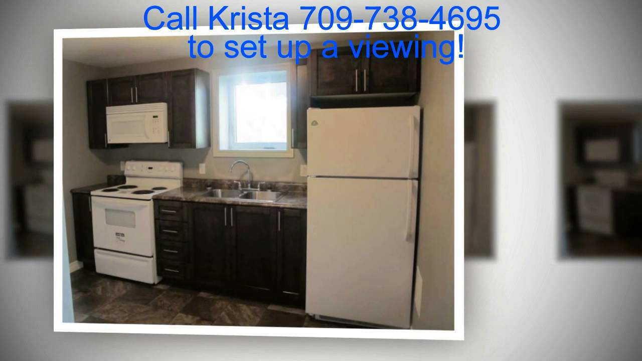 Brand NEW, 2 Bedroom Basement Apartment For Rent Bridgeport Street Paradise  NL