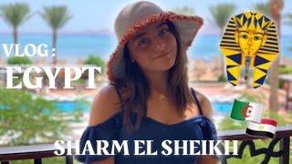 شربت كأس شاي في وسط صحراء شرم الشيخ ! 😍VLOG SHARM EL SHEIKH 🇪🇬