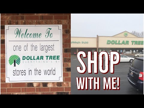 Epic Shop With Me In The LARGEST DOLLAR TREE IN THE US