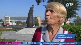 Малые города России: Луховицы - вторая по величине ферма Подмосковья