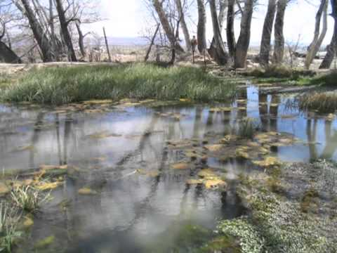 The Consequences: Transporting Snake Valley water to satisfy a thirsty Las Vegas