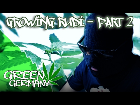 """The Kindergarten"" 