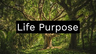 Life Purpose ~ Finding Your Life Purpose