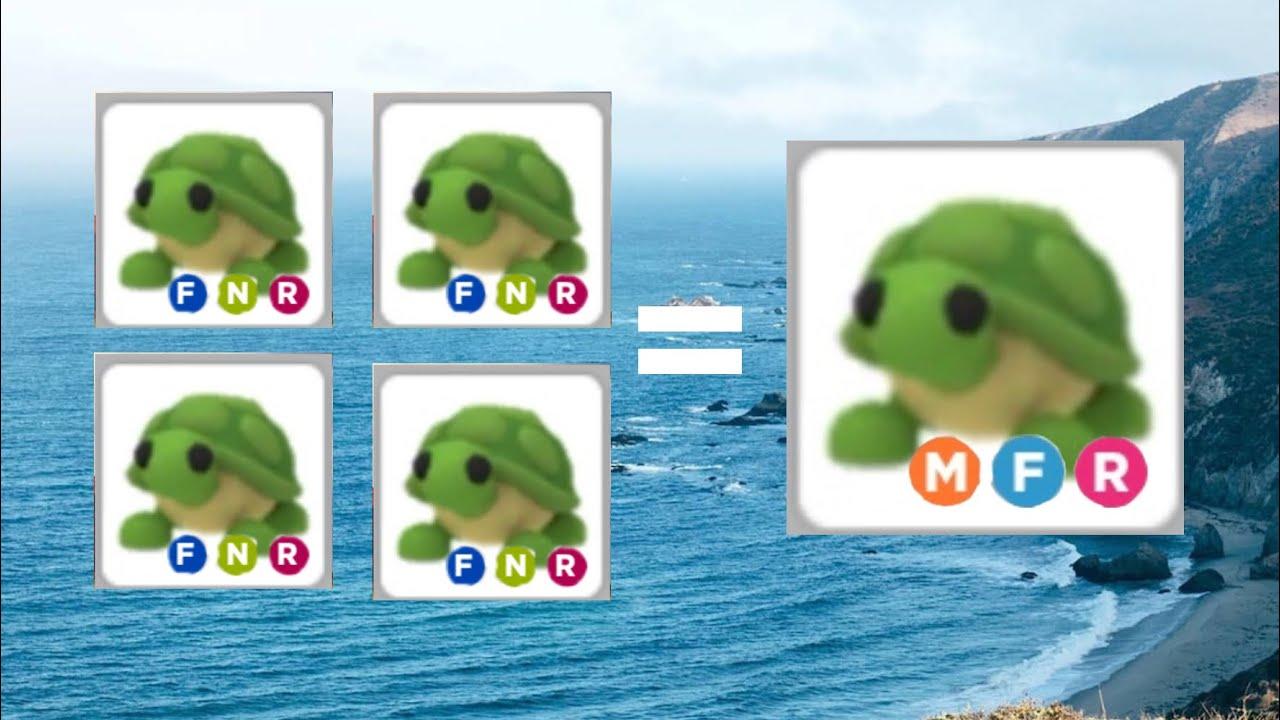 Making Mega Neon Turtle Adopt Me Youtube