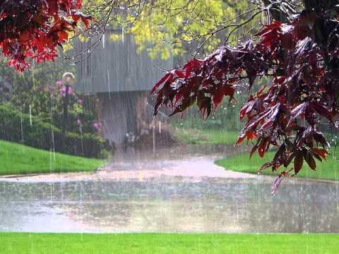 Rain Fall Live Wallpaper Beautiful Rain 10 Hours Of Deep Sleep Youtube