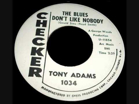 Tony Adams - The Blues Don't Like Nobody