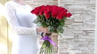 51 красная роза. Цветы Новая Голландия. Интернет магазин цветов.(, 2015-06-16T14:01:31.000Z)