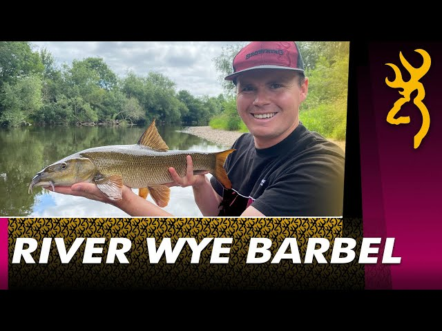 Simple Barbel Fishing 2021 : Meat Fishing on the river Wye