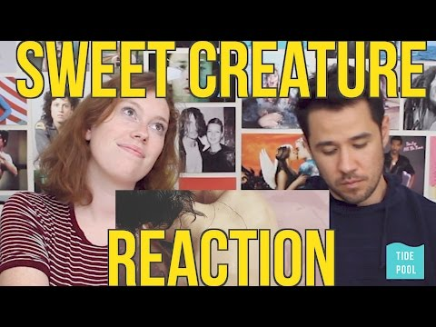 Harry Styles - Sweet Creature - REACTION