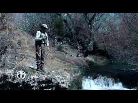 Go Fishing At Mulcock Ranch