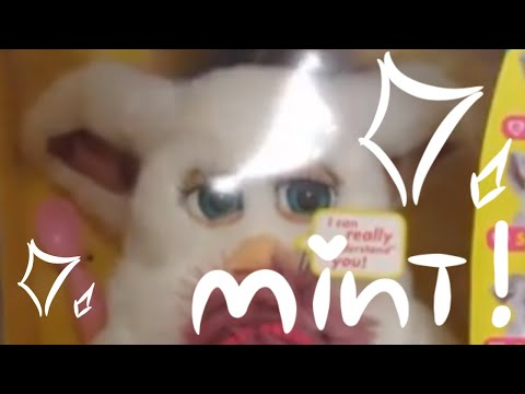 2005 Furby Mint Unboxing