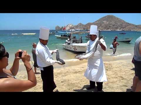 """Baja Cantina Beach """"Catch of the Day"""" (July 3, 2012)"""