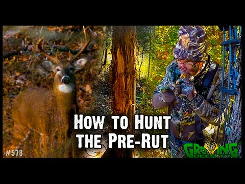 8 Tips For Hunting The Pre-Rut  | Myth Buster - Deer Activity Is NOT Based On  Moon Phase (#578)