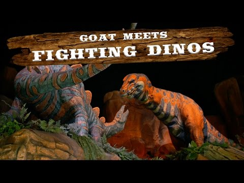 Fighting Dinos   Walt Disney World Goat Friends   WDW Best Day Ever