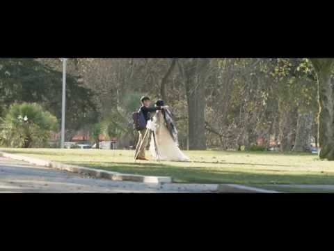 Hagley Park - Christchurch 4K (colour grading exercise)