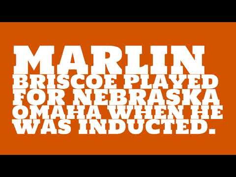 Who did Marlin Briscoe play for?