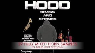 Hip Hop Horn Samples| Brass Samples