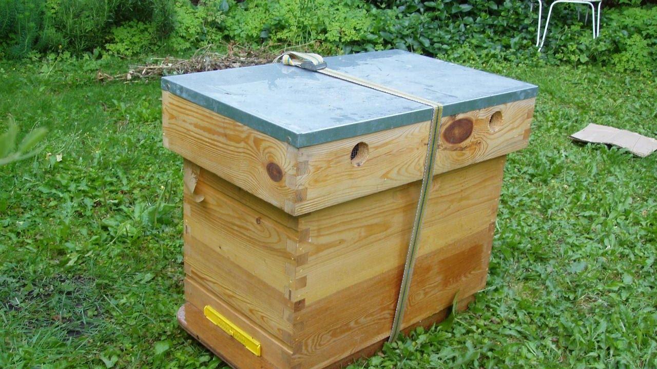 fabriquer sa ruchette de production d 39 essaims pas cher dadant 6c zeprofdortie bee house youtube. Black Bedroom Furniture Sets. Home Design Ideas