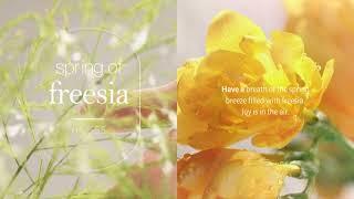 #향수바디워시 [해브어] Spring of freesi…