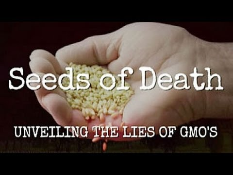 Seeds Of Death Controversy GMO Truth