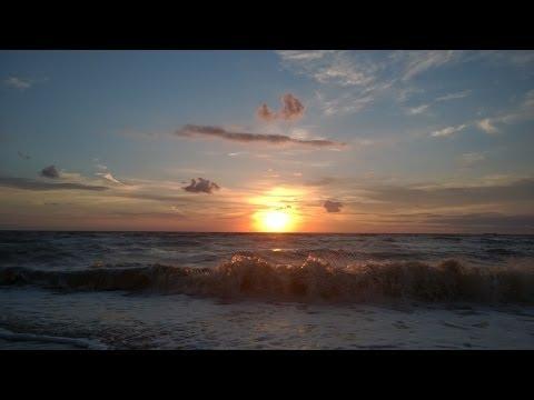Ейск, отдых с детьми 2014. Азовское море. Пляж Каменка. Дельфинарий. Океанариум.