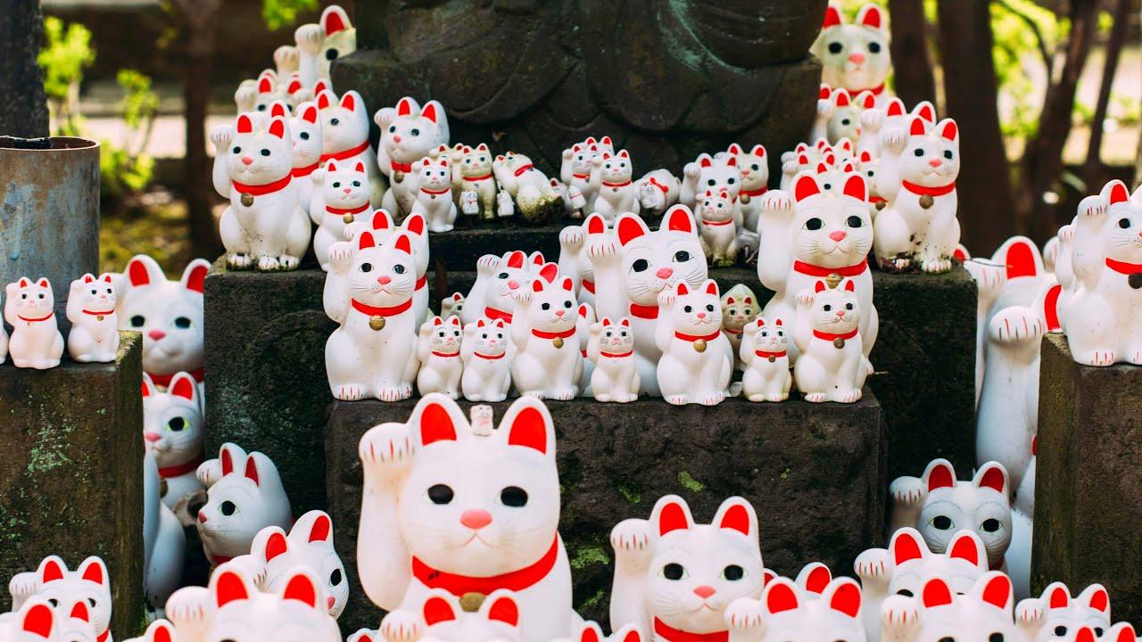 Live Tokyo Walk - Setagaya Line & The Cat Temple 世田谷線と豪徳寺の散歩