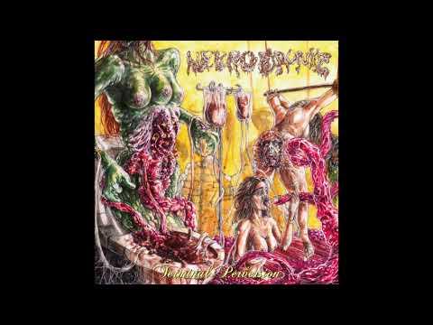 "Nekro Drunkz - ""Terminal Perversion"" (Full Album)"