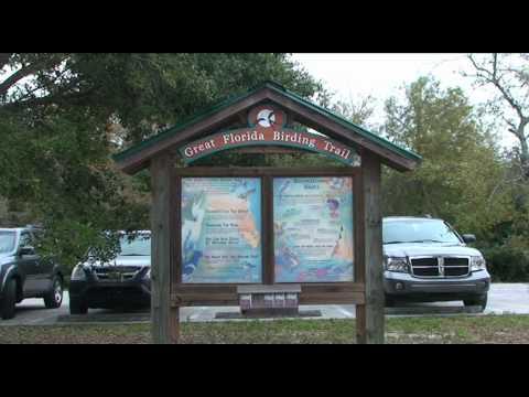 The Arthur R. Marshall Loxahatchee National Wildlife Refuge, Boynton Beach, Florida, USA