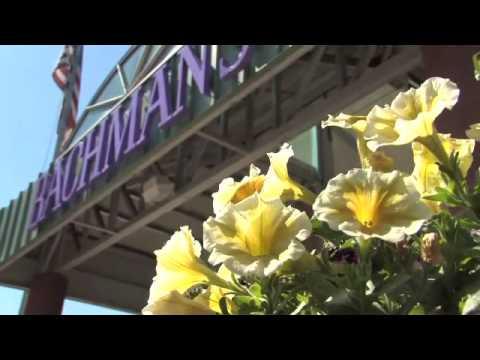 BACHMANS Floral Gift Garden